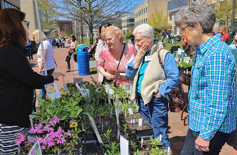 howard county maryland greenfest