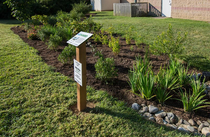 beth shalom rain garden howard county maryland